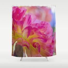 Red Pink and Yellow Mum SRF 16 5271 Shower Curtain