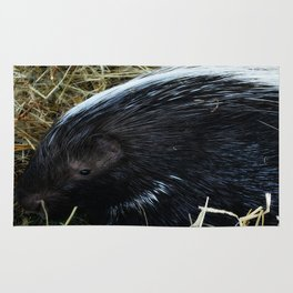 Porcupine Rug