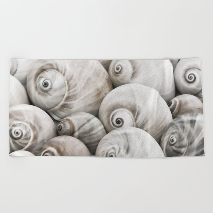Shark's eye shell collection Beach Towel