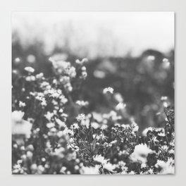 Vintage Meadow Canvas Print