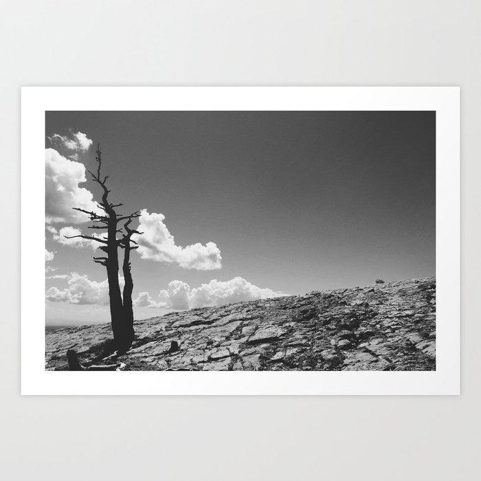 """The Tower On Sandia"" Art Print"