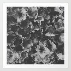 Dark Spring Art Print