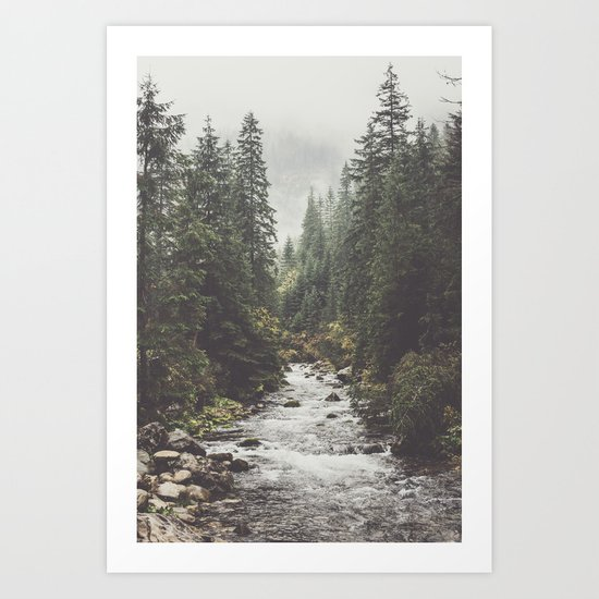 Mountain creek - Landscape and Nature Photography by ewkaphoto