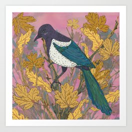 Magpie and Maple Art Print