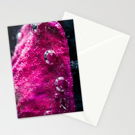 Pink Petal Stationery Cards