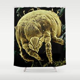 Yellow mite (Tydeidae) Shower Curtain