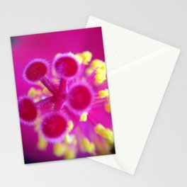 Macro 006 Stationery Cards