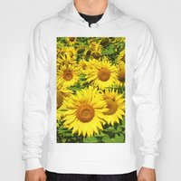 sunflowers Hoodies featuring Sunflowers. by Assiyam