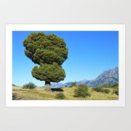 Big tree and patagonian landscape Art Print