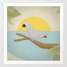 African Grey Parrot Art Print