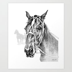 Sir Castleton (NZ) - Standardbred Art Print