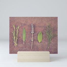 Herbs Mini Art Print