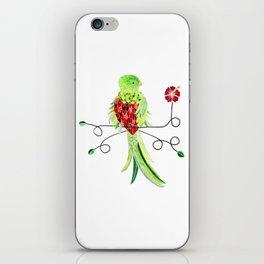 Bird of Costa Rica, quetzal iPhone Skin
