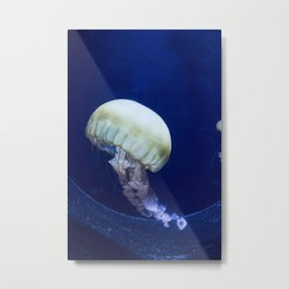 Jellyfish swimming Metal Print