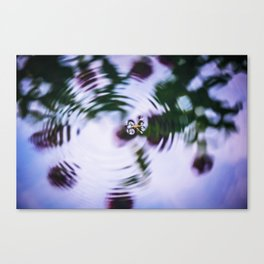 Waterbug on Water Surface Canvas Print