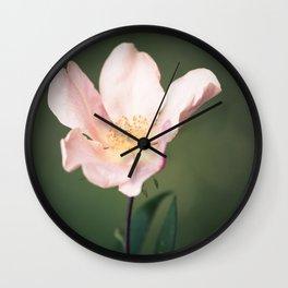 October flower Wall Clock