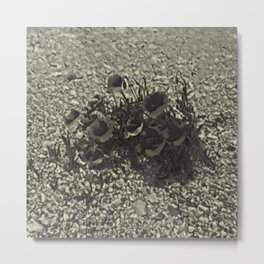 Loneliness IV Metal Print