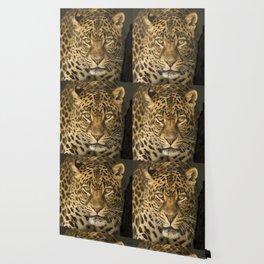 Dangerous leopard Wallpaper