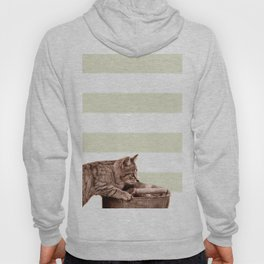 Cat Play on stripes Hoody