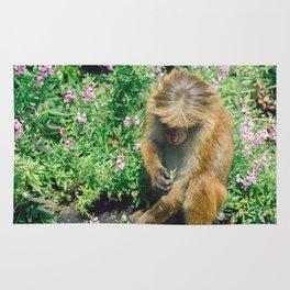 Monkey at the Royal Botanical Garden, Kandy, Sri Lanka Rug