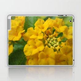Lantana Laptop & iPad Skin