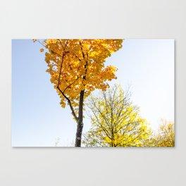 Autumn Feels Canvas Print