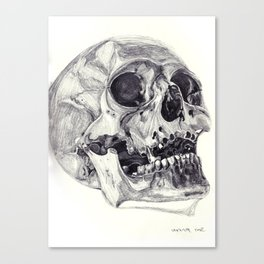 Skull pencil drawing Canvas Print