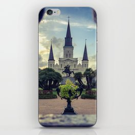 Through the Iron Gates iPhone Skin