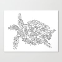 turtles Canvas Prints featuring Turtles by Evolution Posters