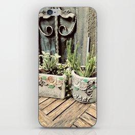 Cactus plants on coffee table iPhone Skin