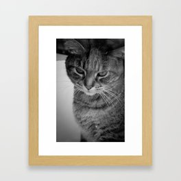 What's up, Doc? Framed Art Print