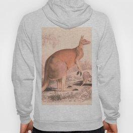 Vintage Kangaroo Family Illustration (1849) Hoody