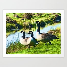 Canada Geese Dream | Painting  Art Print