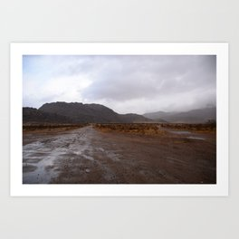 After the Desert Rain Art Print