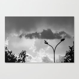 I'm waiting here. Canvas Print