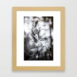 Rust_02 Framed Art Print