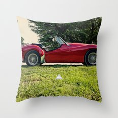 Room For Two Throw Pillow