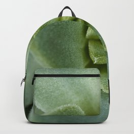 Succulent close up 4211 Backpack
