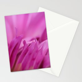 Dreamy Pink Dahlia Stationery Cards