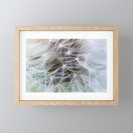 Dandelion Dream Framed Mini Art Print