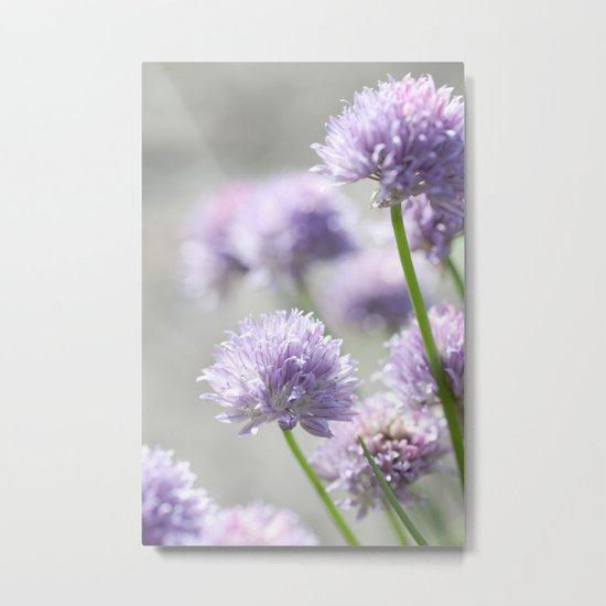 I dreamt of fragrant gardens Metal Print