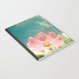 Shelter Notebook
