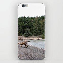 On The Beach in Washington iPhone Skin