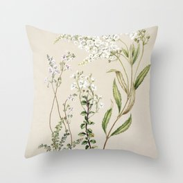 Antique plant Veronica drawn by Sarah Featon (1848-1927) Throw Pillow