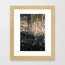 Hello, World. Framed Art Print