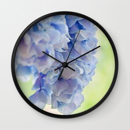 Soft blue Hydrangea. Shallow depth of field with copy space Wall Clock