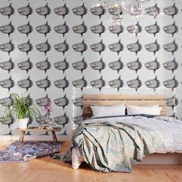 Ocean Sunfish (Mola mola) Wallpaper