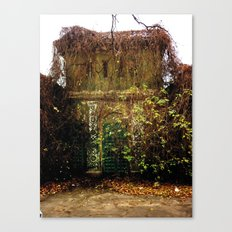 Nature finds the way inside... Canvas Print