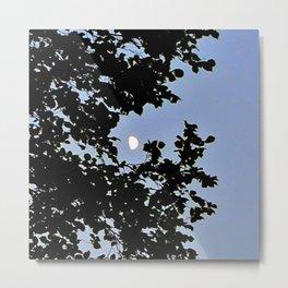 Day Moon Waning Metal Print
