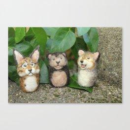 Felted Animal Miniatures Canvas Print